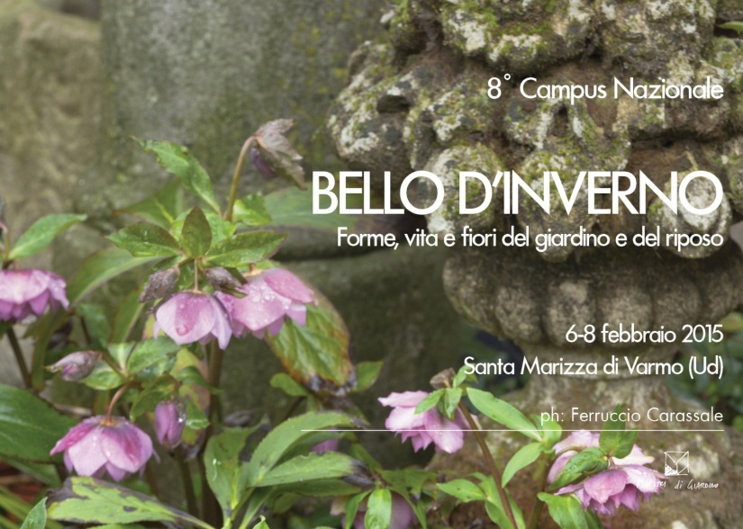8° Campus:  BELLO D'INVERNO  (Santa Marizza di Varmo Ud, 6–8 febbraio2015)