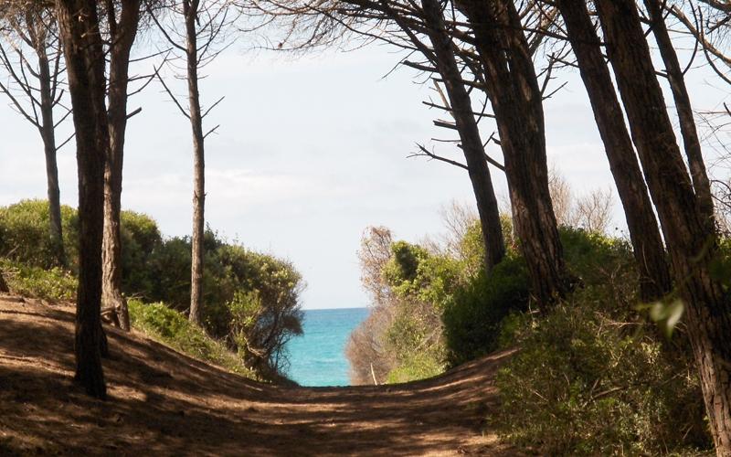 Toscana e macchia mediterranea 14 e 15 aprile2018